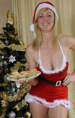 Santa's Christmas helper with freshly baked mince pies