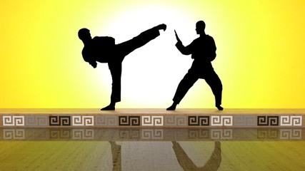 Black Karate MIRROR V