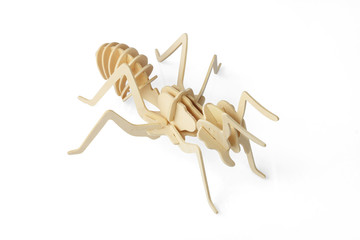 Wooden Ant
