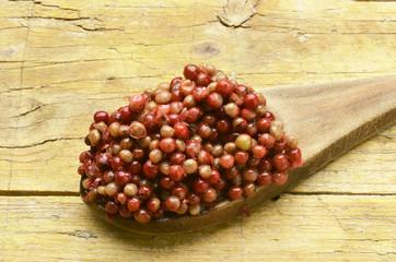 Aguaribay Pepe rosa Peruanischer Pfefferbaum Peruvian pepper