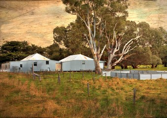Australian sheep shearing sheds with retro grunge filter