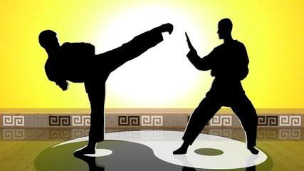 Black Karate MIRROR VI