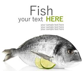 Dorado fish with lemon isolated on white