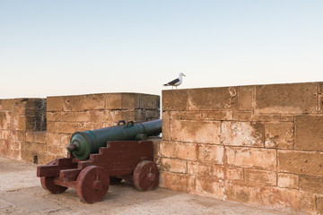 A cannon and a bird on the Skala de le Ville fort