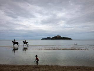 people riding horses on the beach.