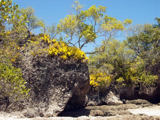 Ilha da Pedra Furada, Península de Maraú,  Bahia