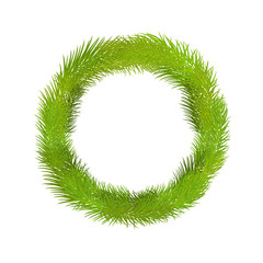 Wreath of pine twig for you design