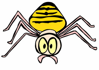 doodle halloween Black and Yellow Garden Spider