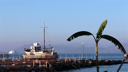 Ship and palm tree on the beach. Greece, Corfu.