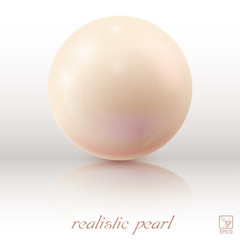 Pearl on a light background with reflection. Vector illustration