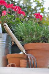 pots de fleurs et outils de jardinage