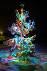 Shining lights of a natural Christmas tree covered snow.