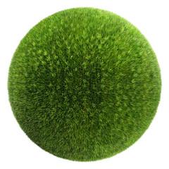 grass ball i