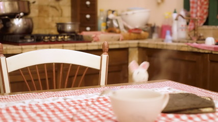 Stuffed toy bunny in kitchen