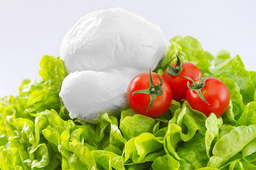 Salad, mozzarella and tomatoes