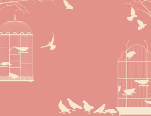 Birds and birdcages postcard 4