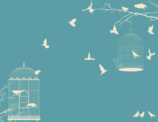 Birds and birdcages postcard 9