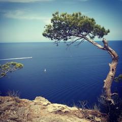 coast, Palma de Mallorca