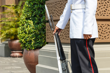lifeguard hold rifle in front of royal palace