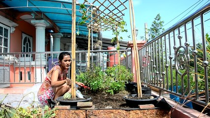 Thai woman gardening at vegetable garden in House