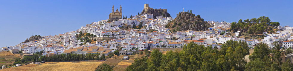 View of Olvera, white village of the province of Cadiz