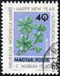 stamp printed by Hungary, shows four-leaf clover