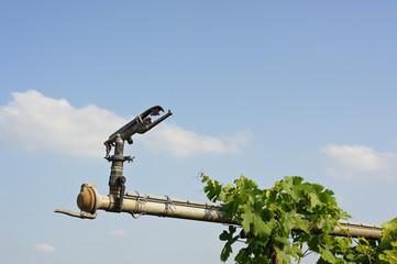 Düse einer Bewässerungsanlage