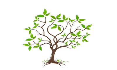 tree .arbre