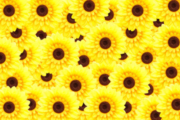 Artificial sunflower background (Helianthus annuus)