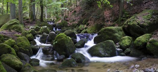 Schwarzwald, Wildbachpanorama