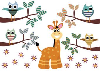 żyrafa i sowy