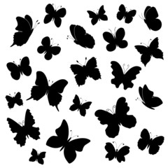 Butterflies silhouettes collection