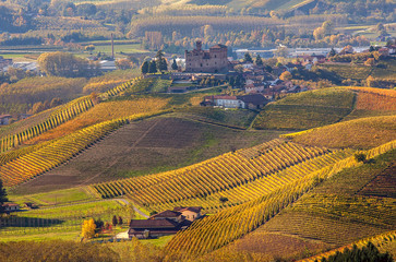 Autumnal hills of Piedmont, Italy.
