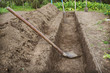 Dug a trench to arrange a deep bed of