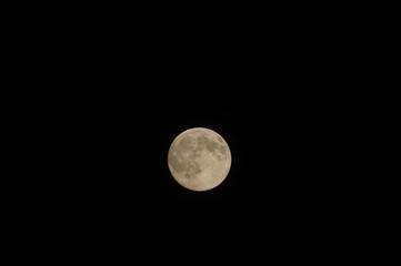 Closeup of full moon, taken on 11-07-2014.