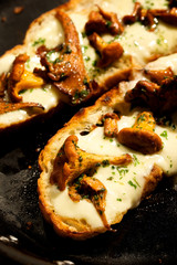 Chanterelle mushroom bruschetta