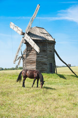 One historic windmill in a Ukraine landscape with horse