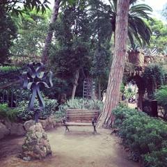 square in Gaudi Rark