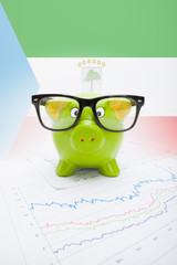 Piggy bank with flag on background - Equatorial Guinea