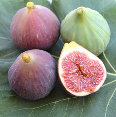 Delicious figs on a fig leaf. Close up image.