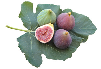 Delicious figs on a fig leaf. Isolated on white background.