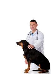 Confident male veterinarian examining dog