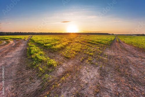 Fotobehang Marokko Road in sunset field