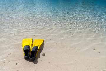 Yellow fins on a beach in French Polinesia