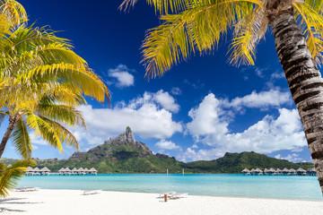 Palme polinesiane con isola e spiaggia bianca sullo sfondo