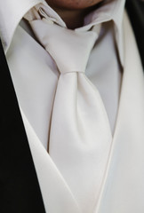 Grooms Cream Colored Tie and Vest