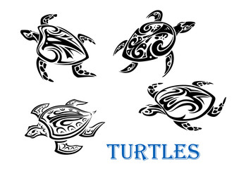 Swimming turtles set
