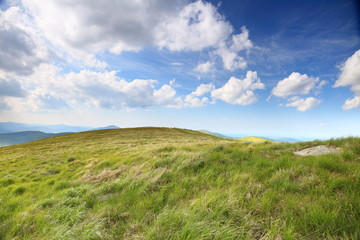 Nature. Green mountain landscape in the summer