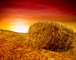 Golden sunset over farm field with hay bale