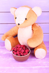 Toy bear and bowl of raspberries